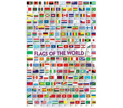 Awesome International Room Idea - Flags of the World 2008 Poster