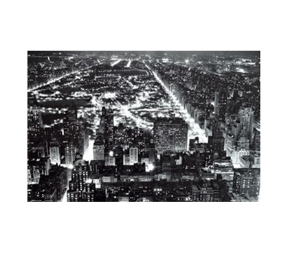 Beautiful View of NY Central Park Poster
