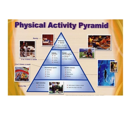 Physical Activity Pyramid - Exercise Chart Dorm Poster