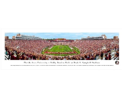 Florida State Seminoles Panoramic Picture - Doak Campbell Stadium Dorm Wall Art Dorm Essentials