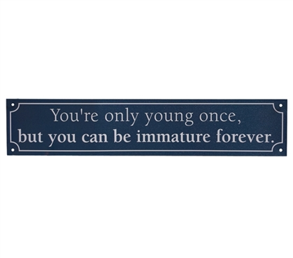 You're Only Young Once - Funny Tin Sign Dorm Essentials Dorm Wall Art