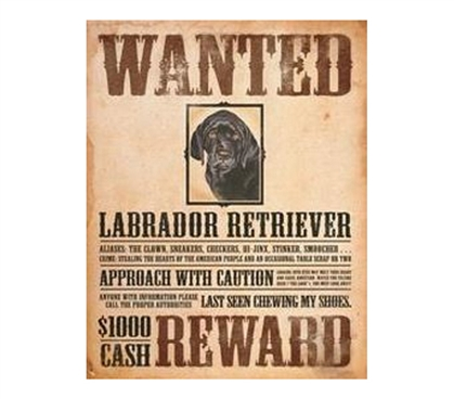 Best Items For Dorms - Wanted Retriever Tin Sign - Tin Signs For College