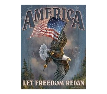 Shop For College - Let Freedom Reign Tin Sign - Decor For Dorms