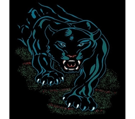 Black Panther Prowl Dorm Room Rug College Decorations
