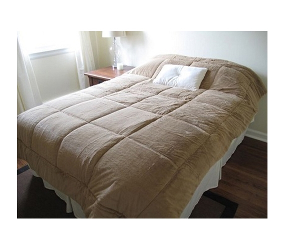 College Plush Comforter Extra Long Twin Tan Decor Twin