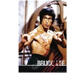 Bruce Lee Fight Poster