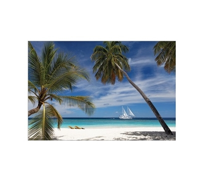 Embudo Daydream Dorm Room Poster Dorm Room Decorations College Wall Decor