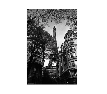 Dorm Room Decorations Eiffel Tower- Black and White Poster for Dorm Rooms Must Have Dorm Items