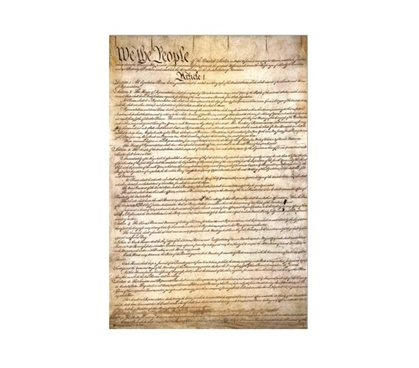 US Constitution Poster Dorm Essentials College Wall Decor