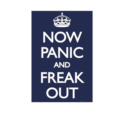 Panic- Freak Out Dorm Room Poster Dorm Room Decorations Wall Decorations for Dorms