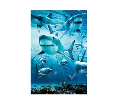Shark Infested Dorm Poster Dorm Room Decorations