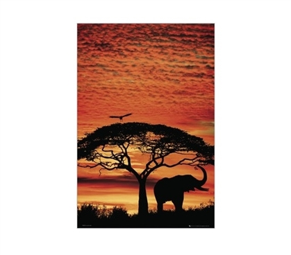 Africa Sunset Dorm Room Poster Wall Decorations for Dorms College Supplies