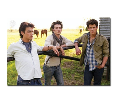 Cheap Portrait Of The Jonas Brothers 'Sunshine' Poster