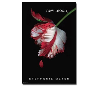 New Moon Cover Twilight Poster Dorm Decor