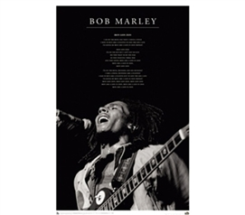 Bob Marley - Iron Lion College Dorm Music Poster reggae music themed college dorm room size poster of Bob Marley