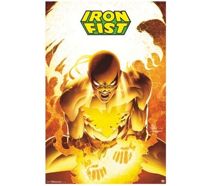 Fun Dorm Wall Decor - Iron Fist Poster - College Wall Decor