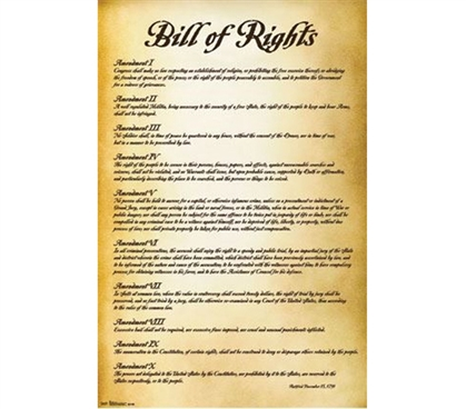 Decorate Your Dorm - Bill of Rights - U.S.A. Poster - Cheap Dorm Stuff