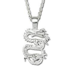 Martial Arts Accessories Necklace Silver Dragon