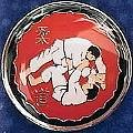 Martial Arts Accessories Pin Judo Throw