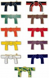 Martial Arts Accessories Pin Karate Belt Rank Colors