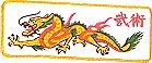 Martial Arts Accessories Patch Jacket Dragon