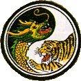 Martial Arts Accessories Patch Dragon Tiger