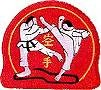 Martial Arts Accessories Patch Karate Kumite Kick