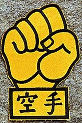 Martial Arts Accessories Patch Goju Fist