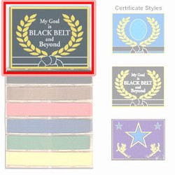 Martial Arts Accessories Rank Belt Display Master