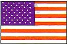 Martial Arts Accessories Wall Flag USA