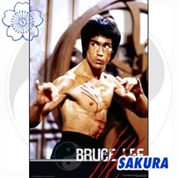 Martial Arts Accessories Poster. Bruce Lee The Dragon Giant Movie Poster Print.
