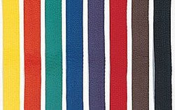 Martial Arts Belt Rank Single Wrap