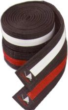 Martial Arts Belt Deluxe Striped Rank