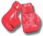 Martial Arts Equipment Boxing Gloves Velcro