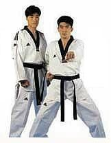 Martial Arts Uniforms Karate Adidas TKD Master