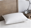 White Goose Down Standard Pillow Sets - Softest Bed Pillows White Goose Down