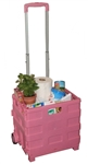 Pink Small Plastic Cart