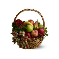 Plant & Fruit Basket