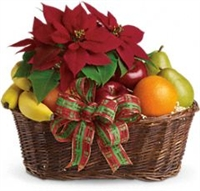 Poinsettia & Fruit Basket
