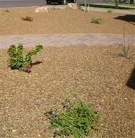 "Cinnamon Brown Gravel 3/4"" Per Ton"