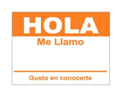 Hola Sticker - Orange