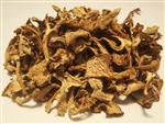Dried Chanterelles - Cantharellus Formosus