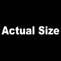 Actual Size - Arial