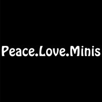 Peace.Love.Minis Hobo