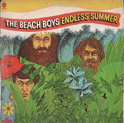 Beach Boys Endless Summer