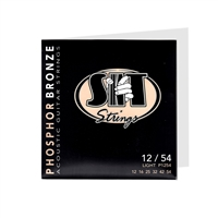 S.I.T. Acoustic Phosphor Bronze Light Strings