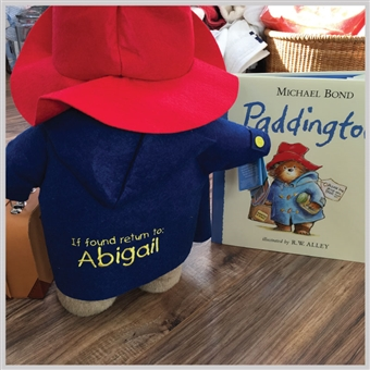 Paddington Bear & Book