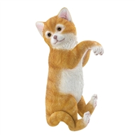 Climbing Hanging Cat Decor