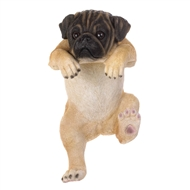 Climbing Hanging Pug Puppy Decor - Daisy