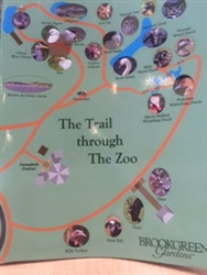COLORING BOOK:  THE TRAIL THROUGH THE ZOO